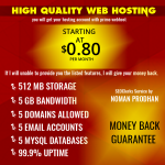 High Quality Web Hosting - Monthly