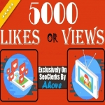 Get Instant 5000 Likes Or Views In Your Social Media Posts