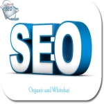 I wil skyrocket your rank in in Google,  50 PR10 Niche Backlinks,  40days SEO