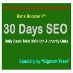 Rank Booster P1 - 30 Days SEO - Daily Basis Total 300 High Authority DA60+ PR5-PR10 Manual Backlinks