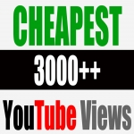Give You 3000 + NON DROP Youtube Views Split Up To 3 Video