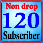 Instant add 120+ subs-cribes high quality with super fast delivery complete