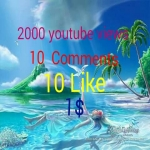 Provide High Quality Custom 1000+youtube views+ 10 subscribers +10Comments+10 like in Your Video