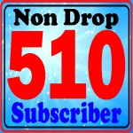 Guarantee 510 subscribers active channel fully safe very fast complete only