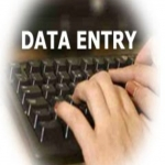 Data Entry and Excel