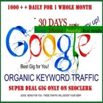 Keyword Traffic - Google Search Organic Traffic - Up To 1000 Searches Per Day with low bounce rate