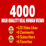 Fast 1000 Youtube view only