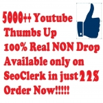 5K + Youtube Likes Lowest Price Ever Super Fast Delivery