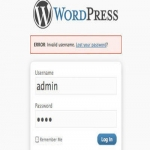 Recover Lost Admin Wordpress login and Password