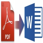 150 page data entry work PDF to MS-Word