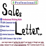 BEST Selling KILLER Description For Your Products or ANYTHING -Write POWERFUL High Converting Sales Letter - Promotional Ad- News letter - Email Ad - About Us or Featured Article 400 - 500 words