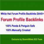 Skyrocket Website or Video With 30 White Hat Forum Profile Backlinks - DA45+