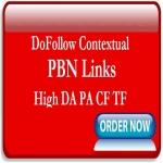 Add Twenty PBN Links from Site Network of High DA PA CT TF