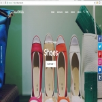 will create a beautiful shopify store ready to make sales