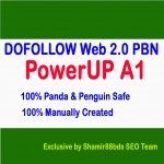 PowerUP A1 - Build 20 DOFOLLOW Web 2.0 Private Blog Network To Increase Ranking