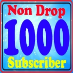 Guarantee 1000+ non drop sub-scribes fully safe and real active service
