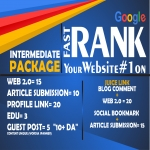 INTERMEDIATE PACKAGE - Manual Job - Latest Google Algorithm Breaker - Improve Your Ranking To Page 1