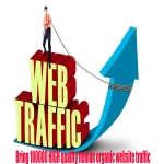 unlimited real traffic by twitter youtube google for 1 month for 20