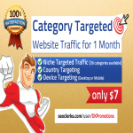 Real Human Niche TARGETED Website TRAFFIC for 30 days