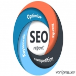 Do a full SEO report for you