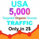 Drive USA Niche Targeted Visitors Website Human Traffic